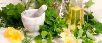 Какие травы полезно пить при заболеваниях печени
