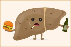 Нездоровый образ жизни для печени