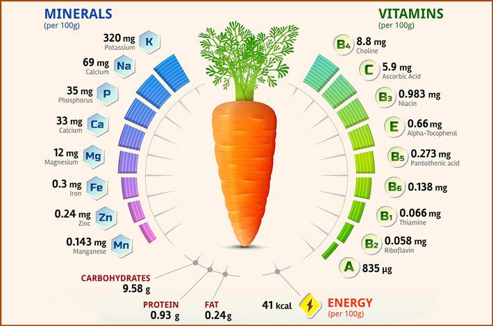 Свойства моркови
