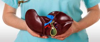 Трансплантация печени: показания и особенности проведения