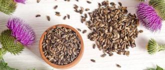 Особенности применения расторопши для лечения печени