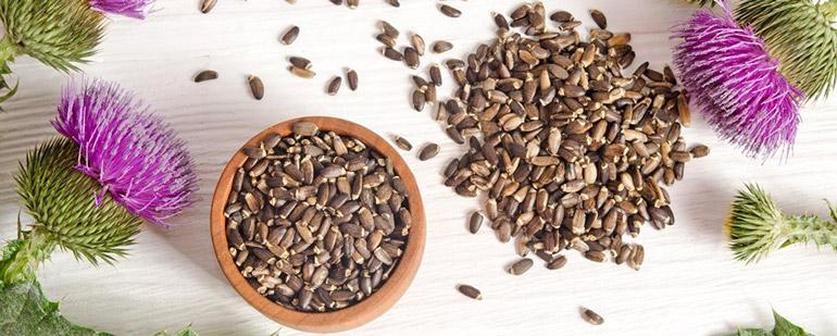 Препараты для лечения печени на основе расторопши