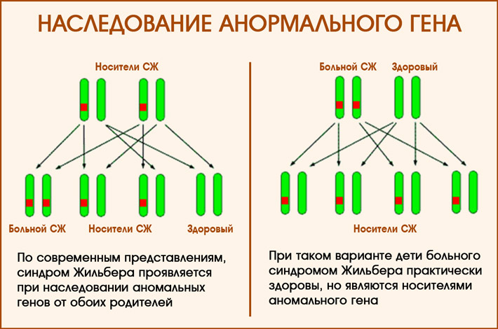 Наследование аномальных генов