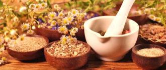 Лекарственные растения, восстанавливающие и очищающие печень