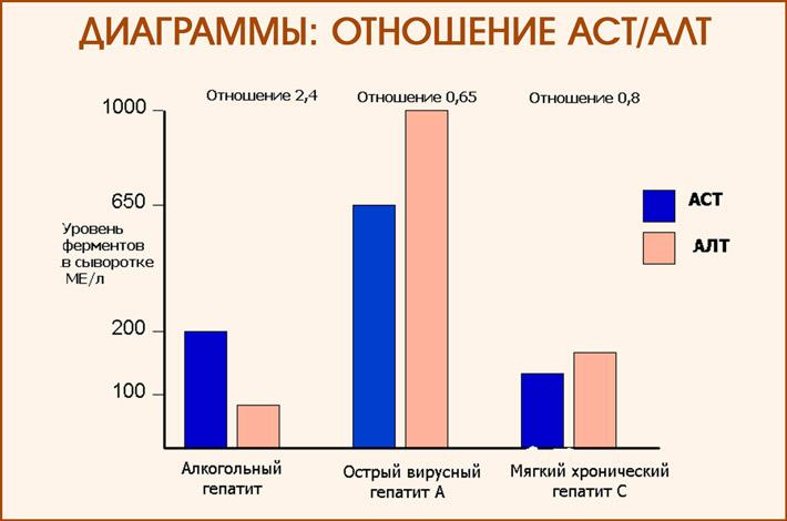 АЛТ и АСТ при гепатите