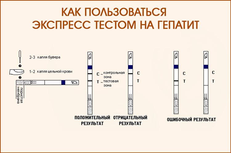 Как пользоваться экспресс тестом на гепатит