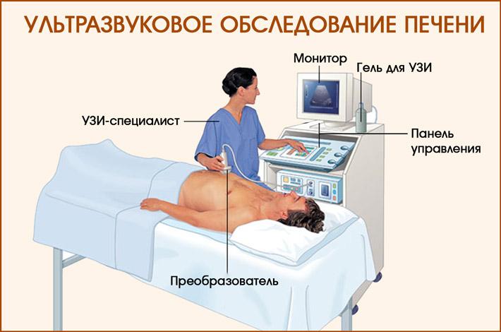 Обследование печени на УЗИ-аппарате