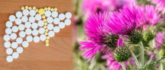 Восстановление печени таблетками расторопши