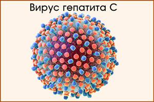 Вирус С