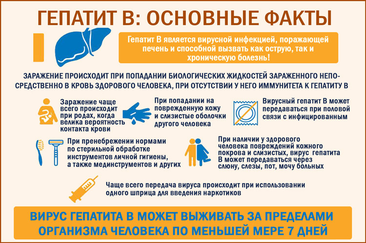 Что нужно знать о гепатите B?