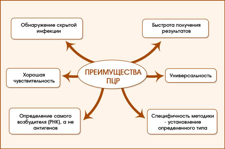 ПРЦ исследование