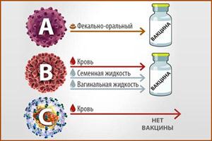 Способы заражения гепатитом