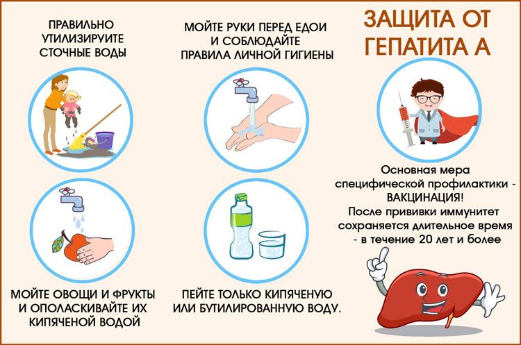 Профилактика от гепатита А