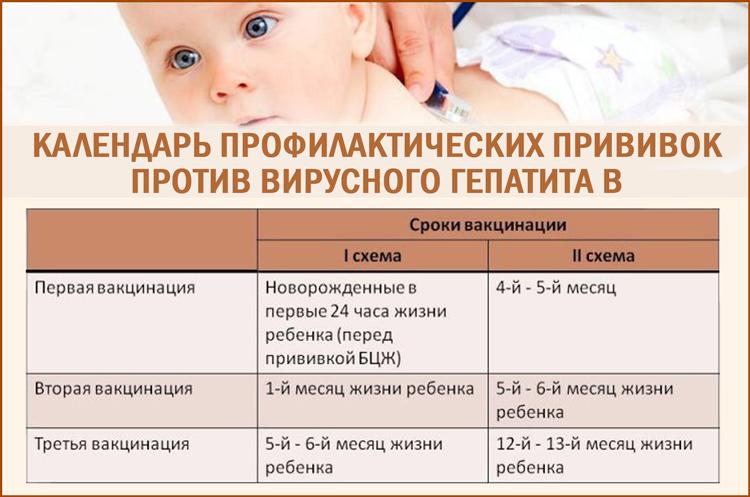 Календарь прививок против гепатита В