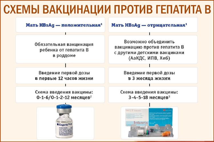 Схема проведения прививки вакциной против вируса гепатита B