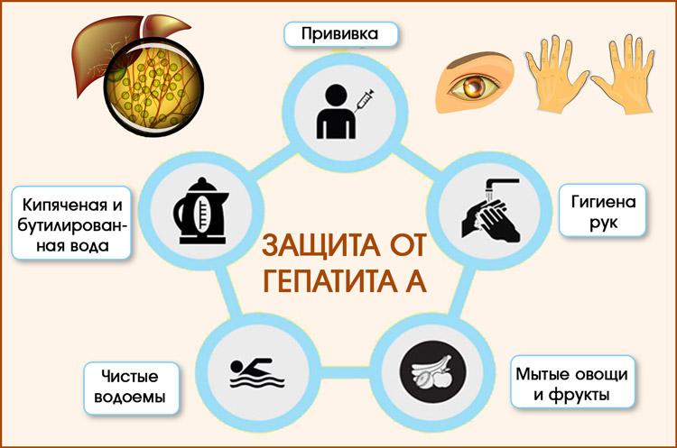 Защита от гепатита А